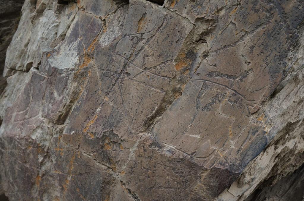 Er zijn ongeveer 5 muren die vol zitten met ingekraste tekeningen van 22.000 jaar v.Chr. Dit is daar een van.