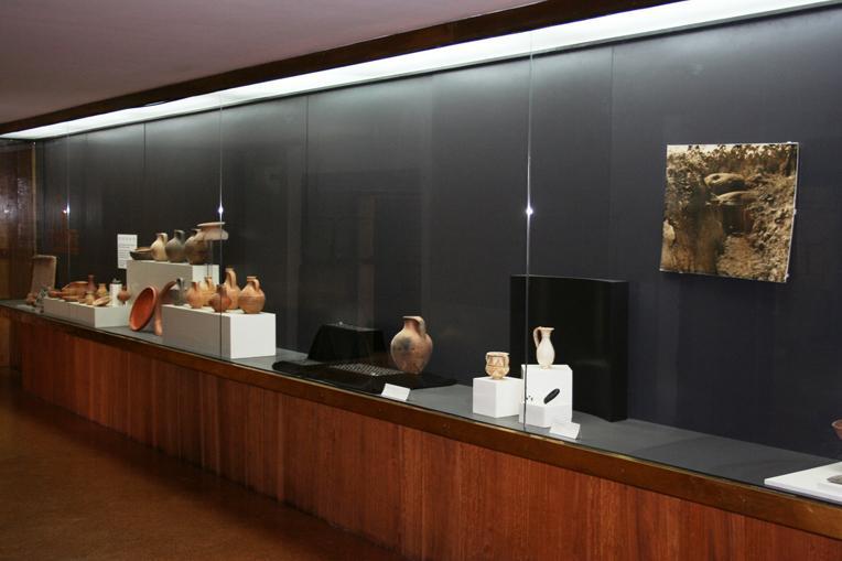 Het Archeologisch Museum van Citânia Sanfins bevind zich op Solar dos Brandões.