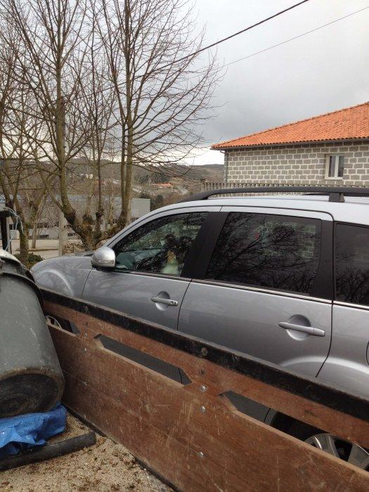 Onze Leeuw paste op de auto